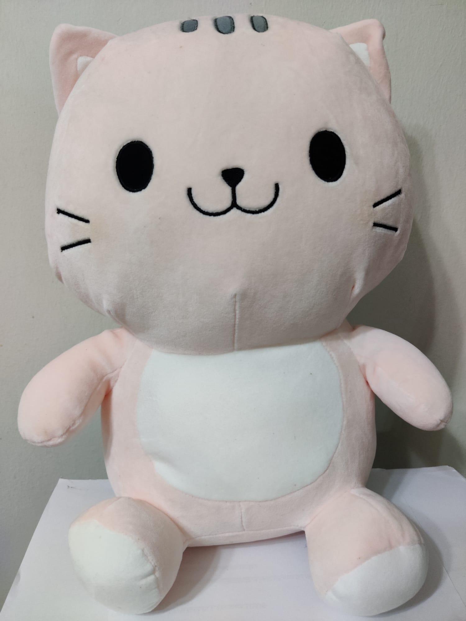 Cuty huggy pinky Cat